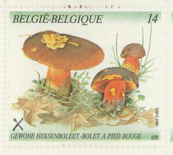 Lots & Sammlungen Motive 200 Verschiedene Pilze Marken Natur & Pflanzen